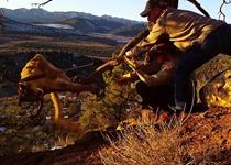 رهاسازی یک قلاده شیر کوهی از دام شکارچیان متخلف+فیلم